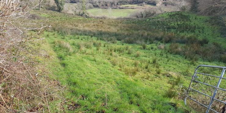 Lands in the townland of  Carrickanarro, Dromahair, Co. Leitrim