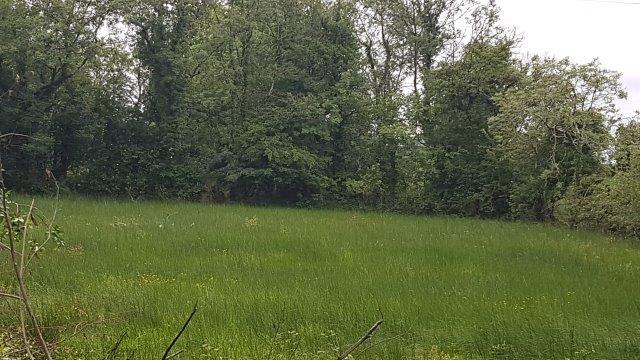 Deerpark & Cornaneane, Manorhamilton, Co. Leitrim