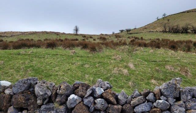 LANDS FOR SALE Ballinabol, Leckaun, Co. Leitrim