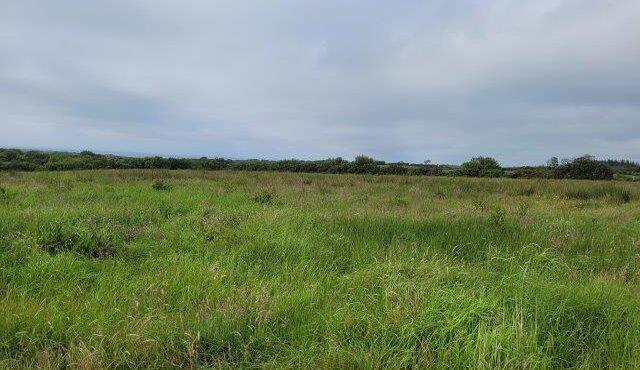 Silver Hill, Ballinafull, Co. Sligo